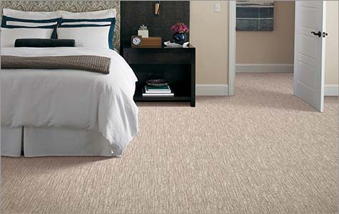 Alexander Smith carpet on sale at Abbey Carpet & Floor in Ashland - Save $100 on your purchase!