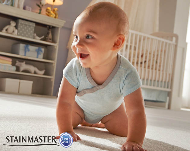 Stainmaster LiveWell is made with kid and pet safe AllerShield� technology, which helps reduce the bonding of dust and allergy particles in the carpet.